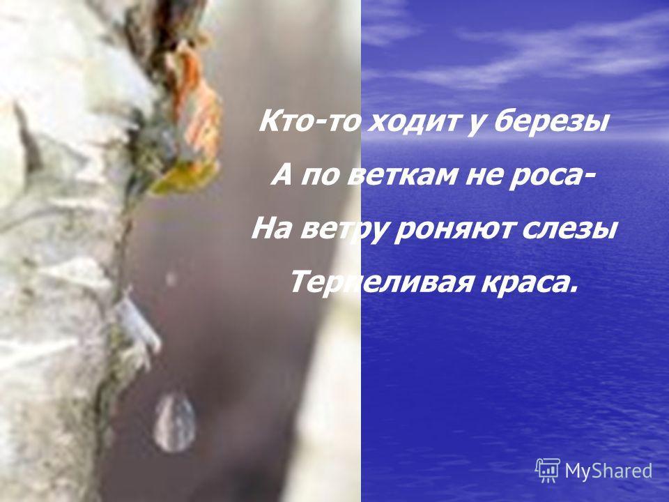 Кто-то ходит у березы А по веткам не роса- На ветру роняют слезы Терпеливая краса.