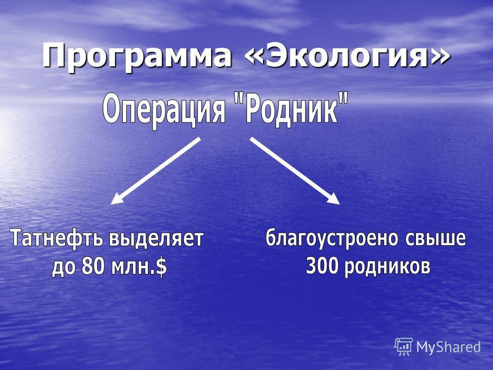 Программа «Экология»