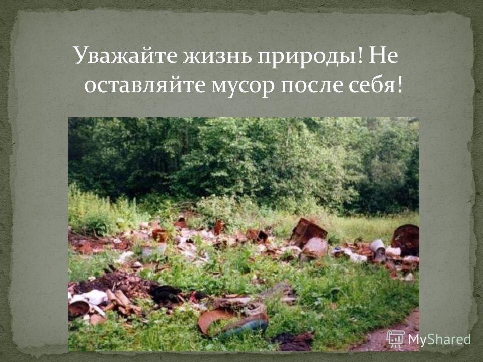 Уважайте жизнь природы! Не оставляйте мусор после себя!