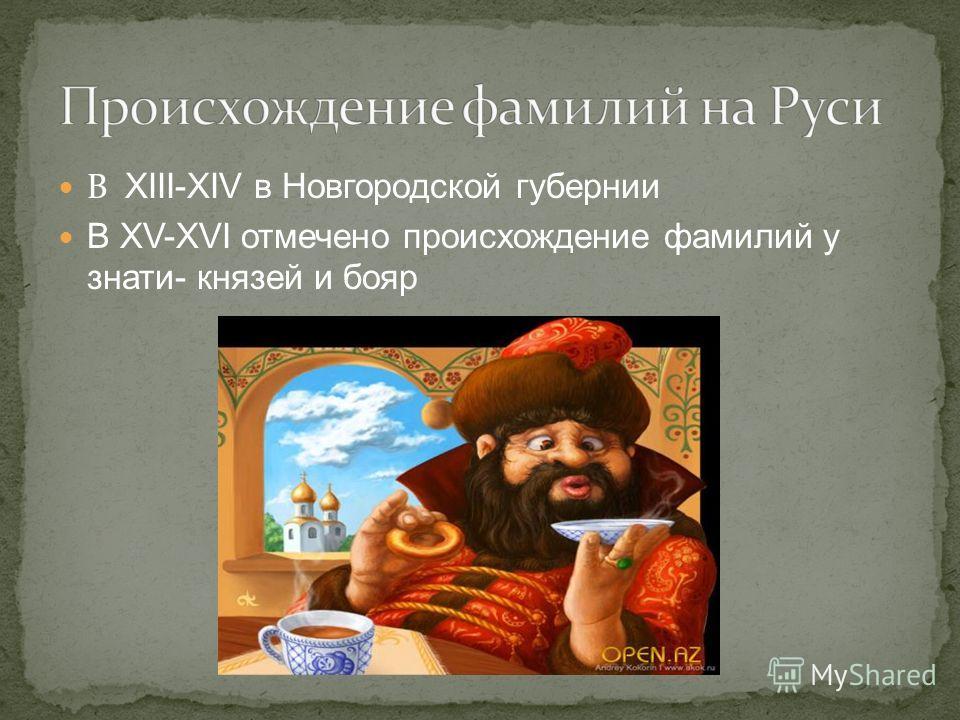 В XIII-XIV в Новгородской губернии В XV-XVI отмечено происхождение фамилий у знати- князей и бояр