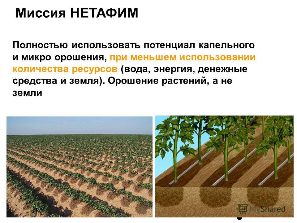 Миссия НЕТАФИМ Полностью использовать потенциал капельного и микро орошения, при меньшем использовании количества ресурсов (вода, энергия, денежные средства и земля). Орошение растений, а не земли