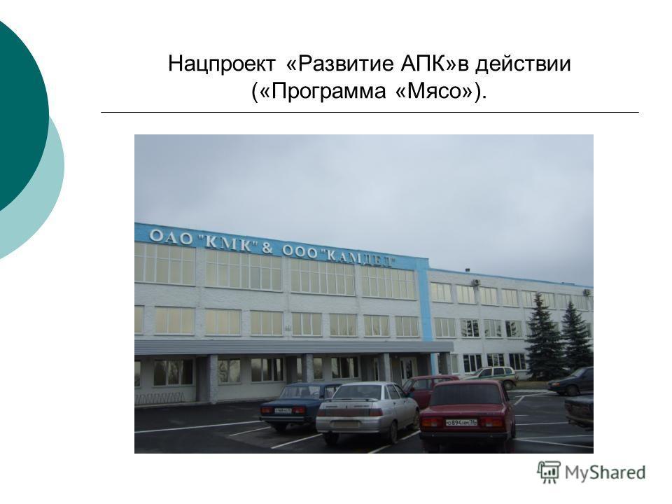 Нацпроект «Развитие АПК»в действии («Программа «Мясо»).