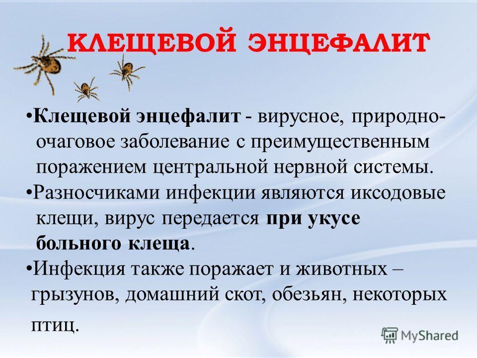 Клещевой энцефалит - вирусное