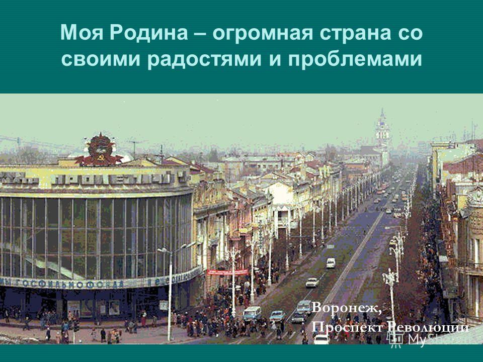 Моя Родина – огромная страна со своими радостями и проблемами. Воронеж, Проспект Революции