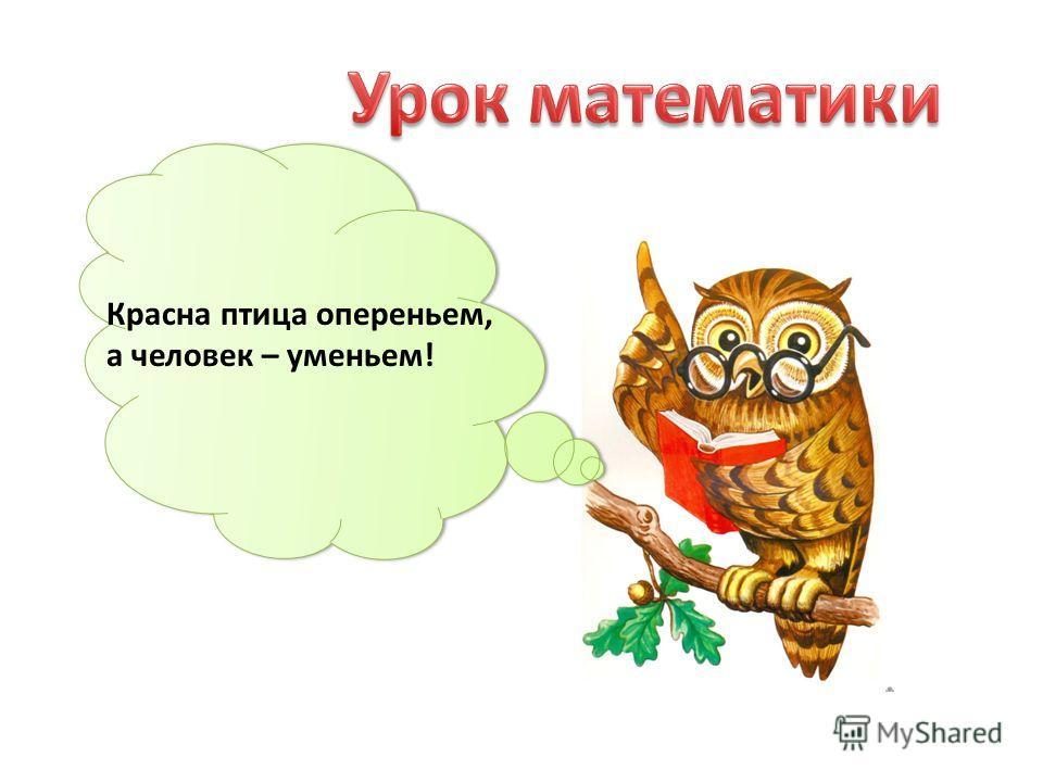 Красна птица опереньем, а человек – уменьем!