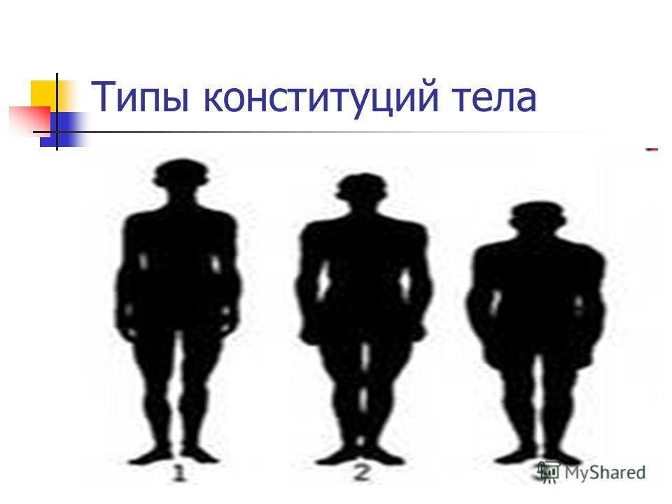 Типы конституций тела