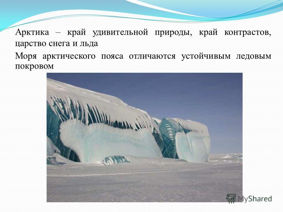 Арктика – край удивительной природы, край контрастов, царство снега и льда Моря арктического пояса отличаются устойчивым ледовым покровом