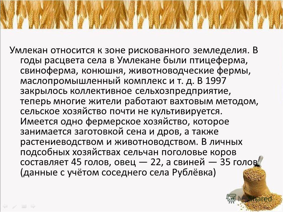 Умлекан относится к зоне рискованного земледелия. В годы расцвета села в Умлекане были птицеферма, свиноферма, конюшня, животноводческие фермы, маслопромышленный комплекс и т. д. В 1997 закрылось коллективное сельхозпредприятие, теперь многие жители