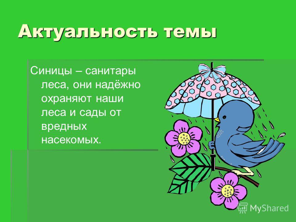 Актуальность темы Синицы – санитары леса, они надёжно охраняют наши леса и сады от вредных насекомых.