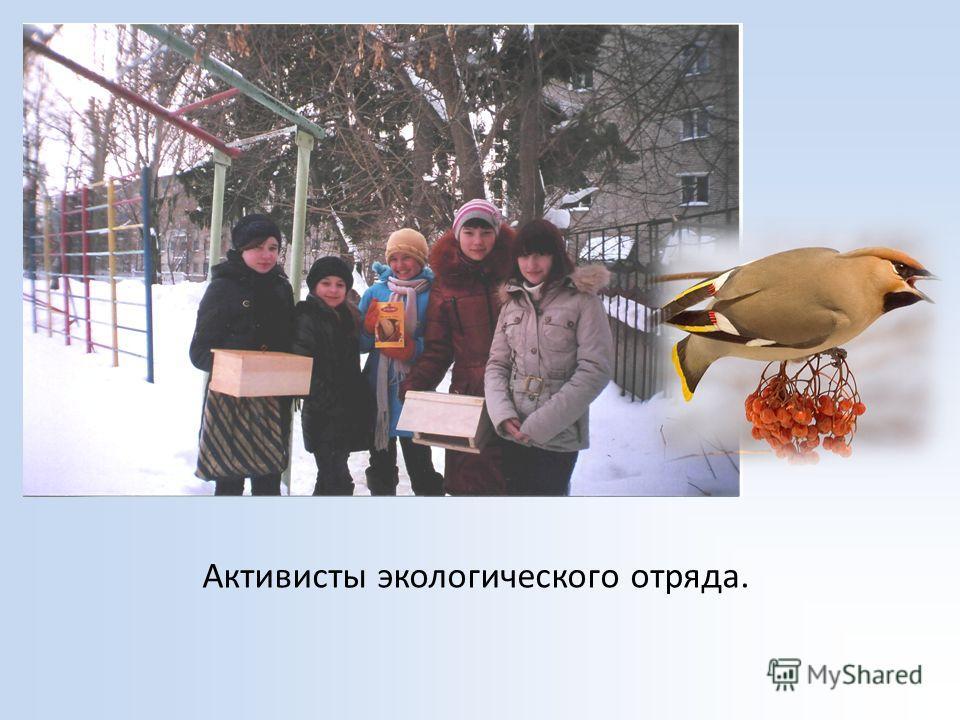Активисты экологического отряда.