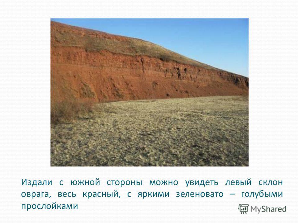 Издали с южной стороны можно увидеть левый склон оврага, весь красный, с яркими зеленовато – голубыми прослойками