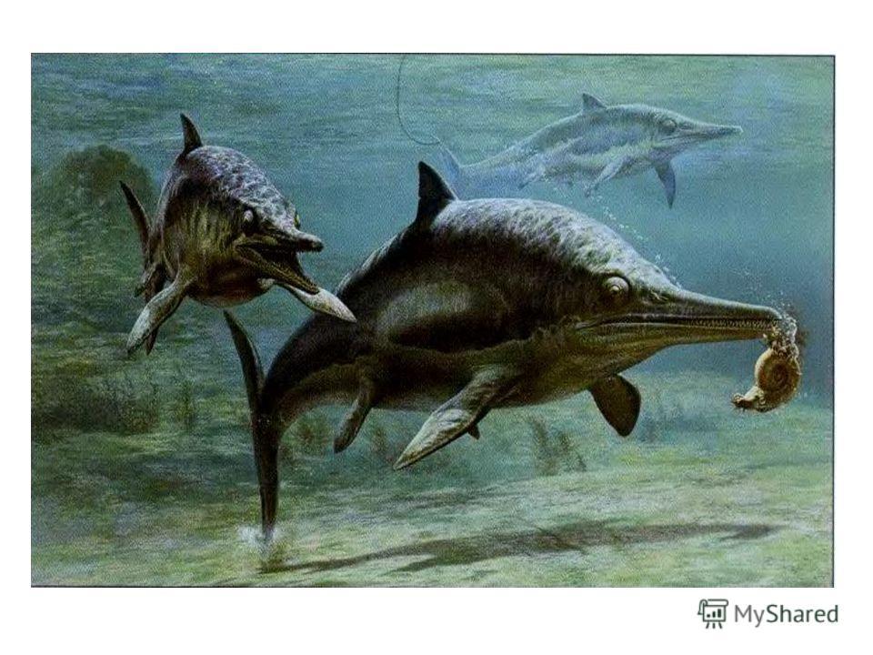 Морские рептилии