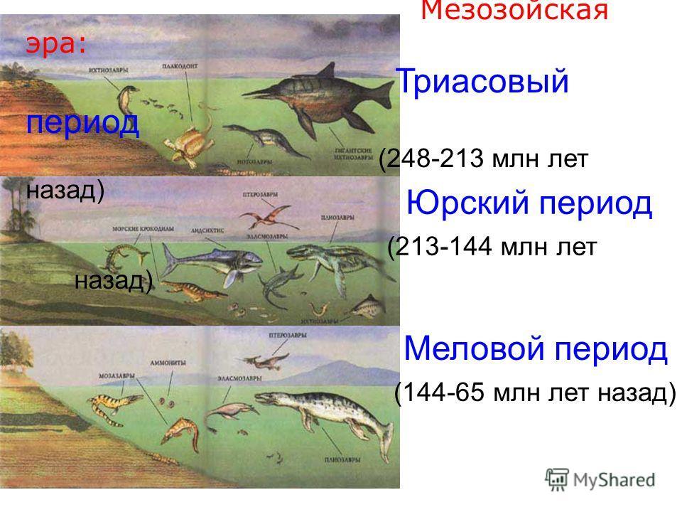 Мезозойская эра: Триасовый период (248-213 млн лет назад) Юрский период (213-144 млн лет назад) Меловой период (144-65 млн лет назад)