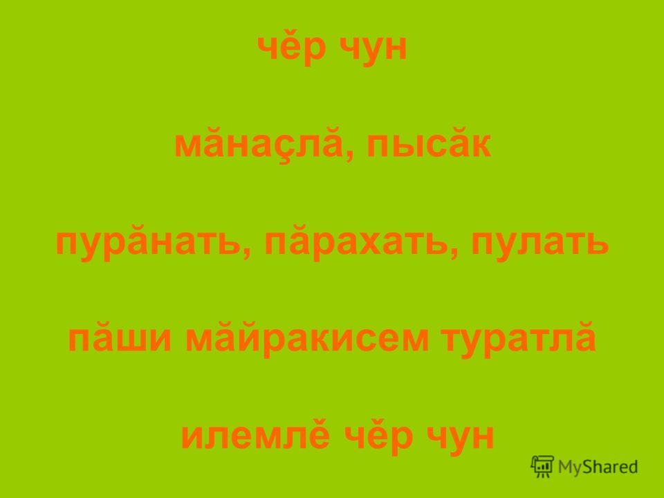 чěр чун мăнаçлă, пысăк пурăнать, пăрахать, пулать пăши мăйракисем туратлă илемлě чěр чун