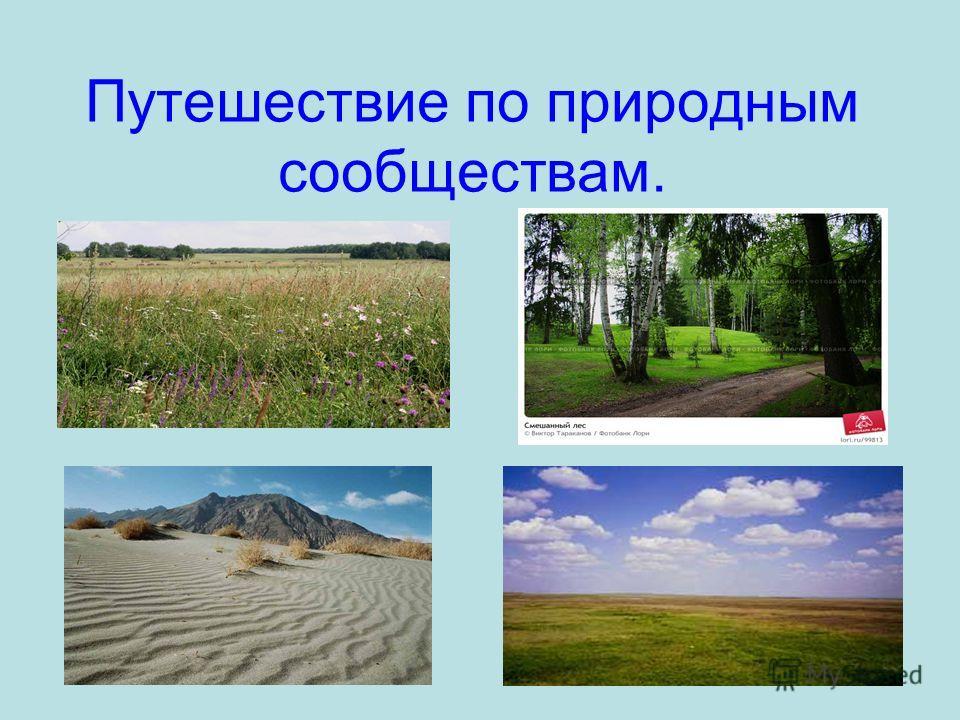 Путешествие по природным сообществам.