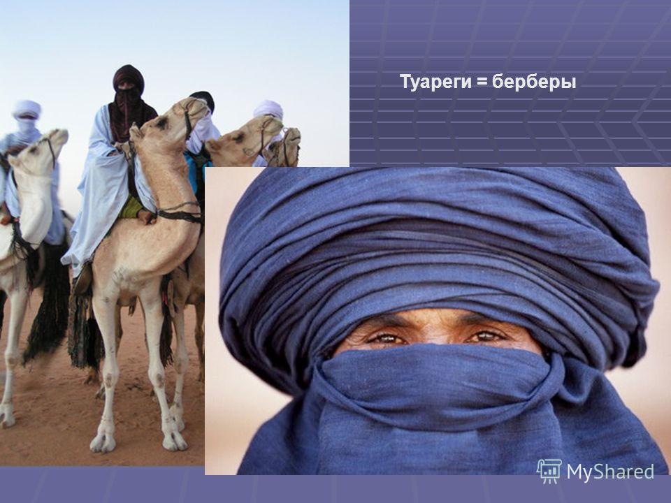 Туареги = берберы