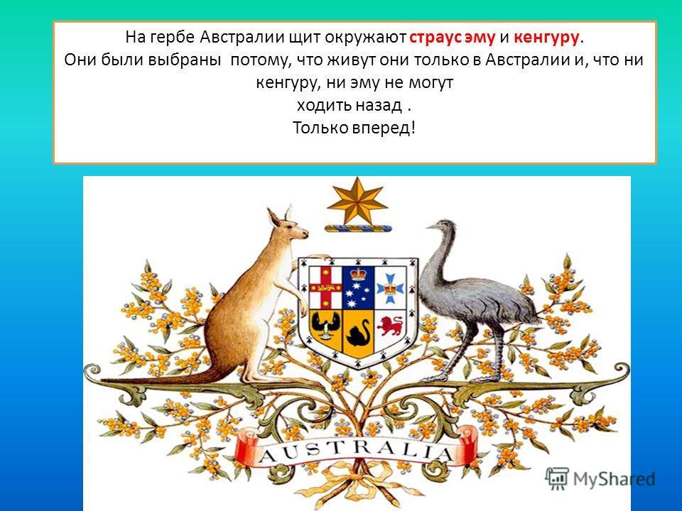 На гербе Австралии щит окружают страус эму и кенгуру. Они были выбраны потому, что живут они только в Австралии и, что ни кенгуру, ни эму не могут ходить назад. Только вперед!