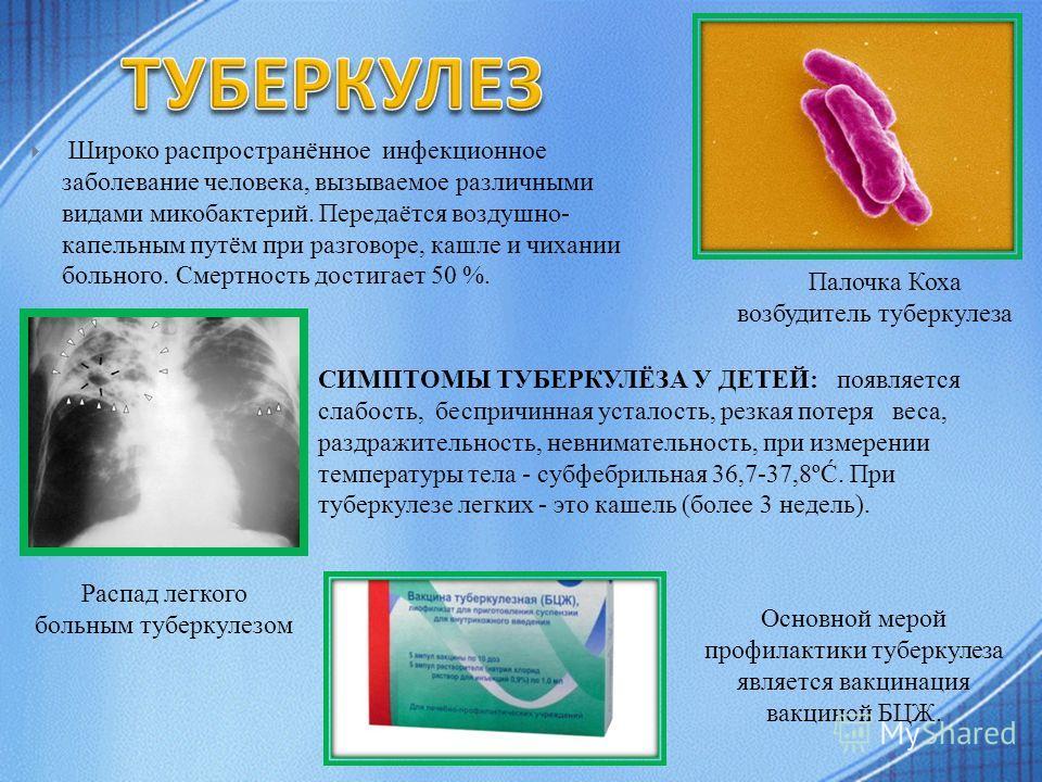 Широко распространённое инфекционное заболевание человека, вызываемое различными видами микобактерий. Передаётся воздушно- капельным путём при разговоре, кашле и чихании больного. Смертность достигает 50 %. Палочка Коха возбудитель туберкулеза СИМПТО