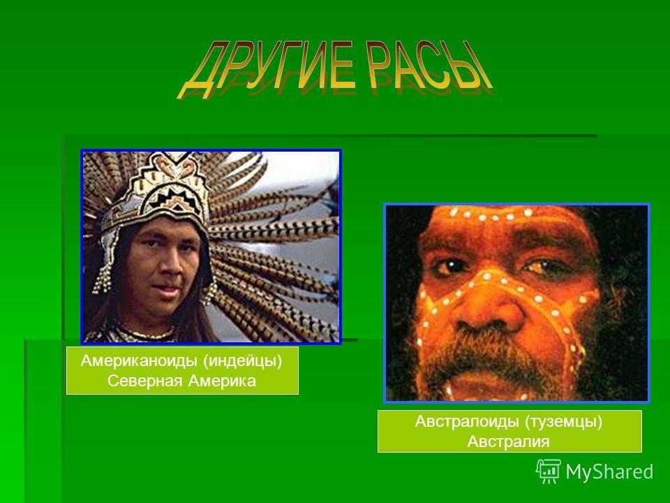 Американоиды (индейцы) Северная Америка Австралоиды (туземцы) Австралия