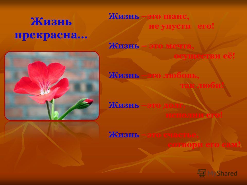 Жизнь прекрасна… Жизнь –это шанс, не упусти его! Жизнь – это мечта, осуществи её! Жизнь –это любовь, так люби! Жизнь –это долг, исполни его! Жизнь –это счастье, сотвори его сам!