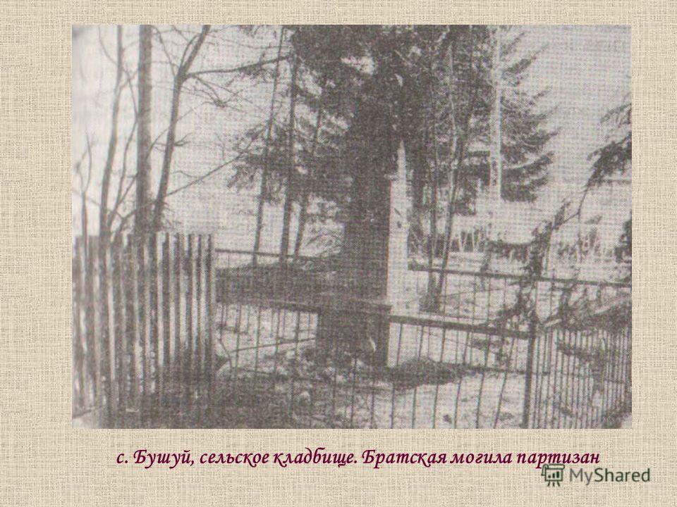 с. Бушуй, сельское кладбище. Братская могила партизан