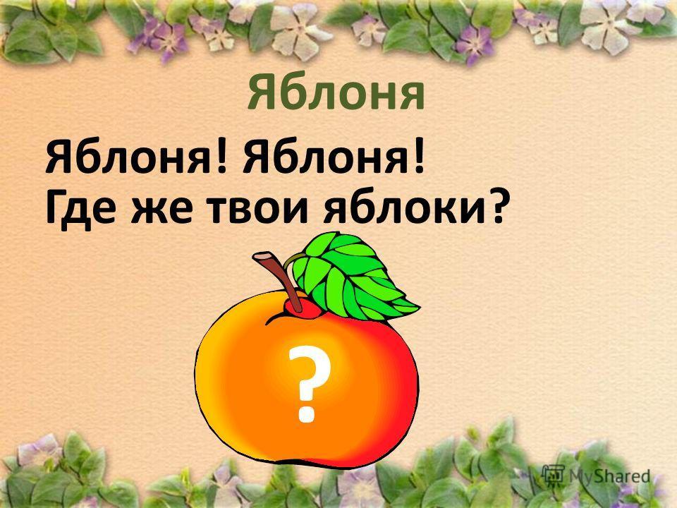 Яблоня! Где же твои яблоки? ?