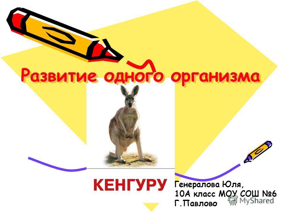 Развитие одного организма Генералова Юля, 10А класс МОУ СОШ 6 Г.Павлово