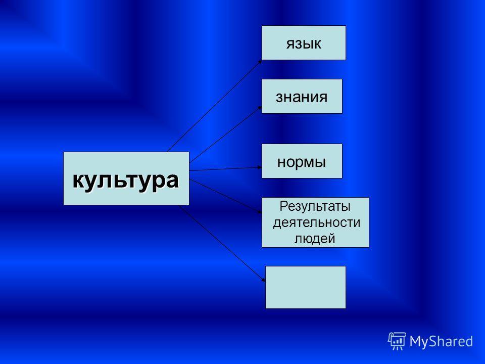 культура язык нормы Результаты деятельности людей знания