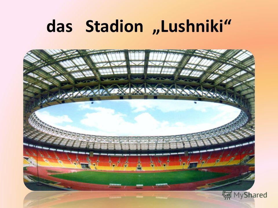 das Stadion Lushniki