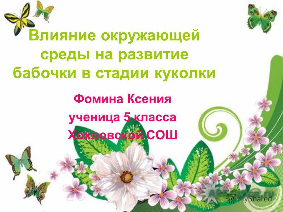 Фомина Ксения ученица 5 класса Хохловской СОШ Влияние окружающей среды на развитие бабочки в стадии куколки
