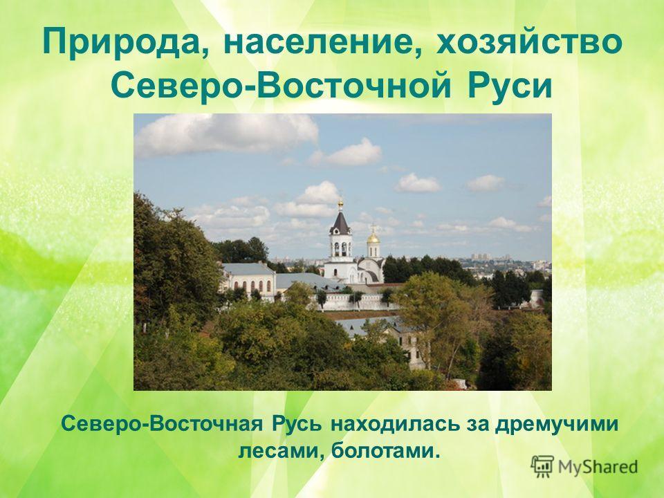 Природа, население, хозяйство Северо-Восточной Руси Северо-Восточная Русь находилась за дремучими лесами, болотами.