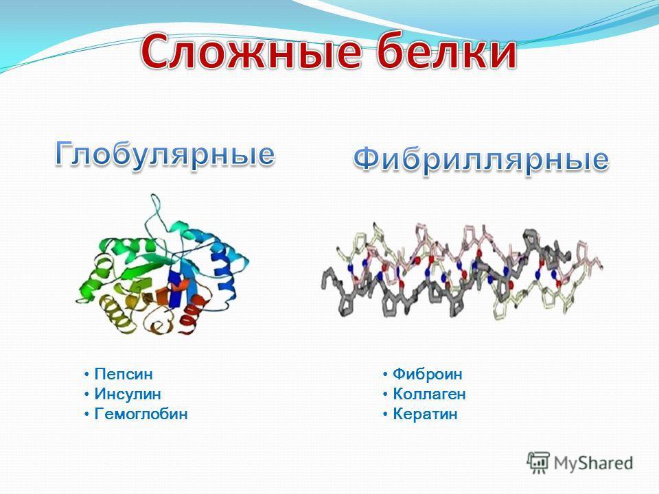 Пепсин Инсулин Гемоглобин Фиброин Коллаген Кератин
