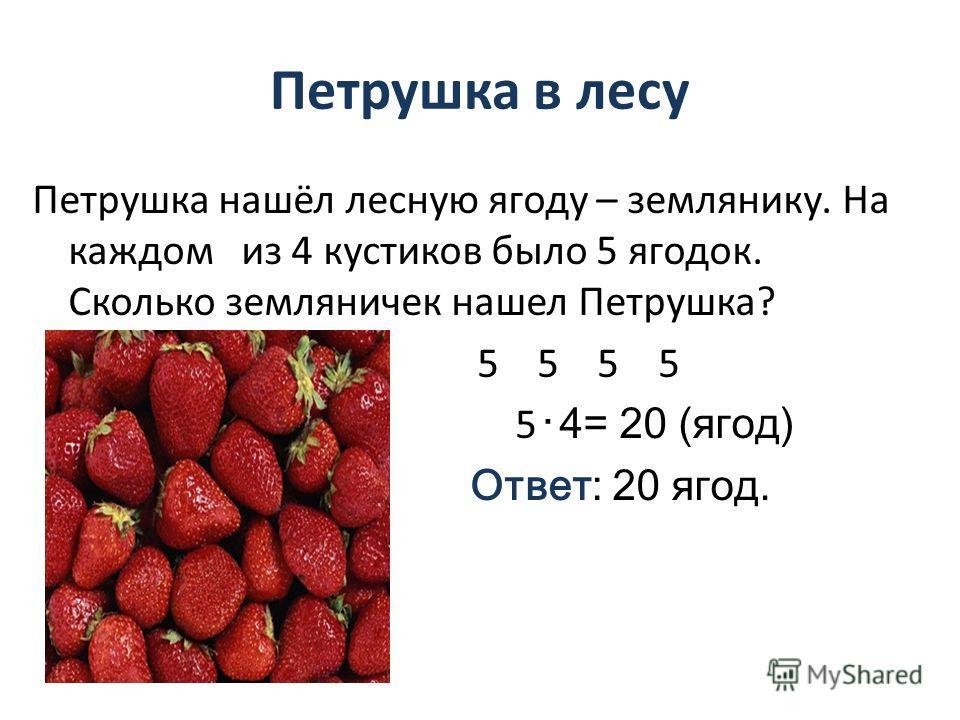 Петрушка в лесу Петрушка нашёл лесную ягоду – землянику. На каждом из 4 кустиков было 5 ягодок. Сколько земляничек нашел Петрушка? 5 5 5 5 5 4= 20 (ягод) Ответ: 20 ягод.