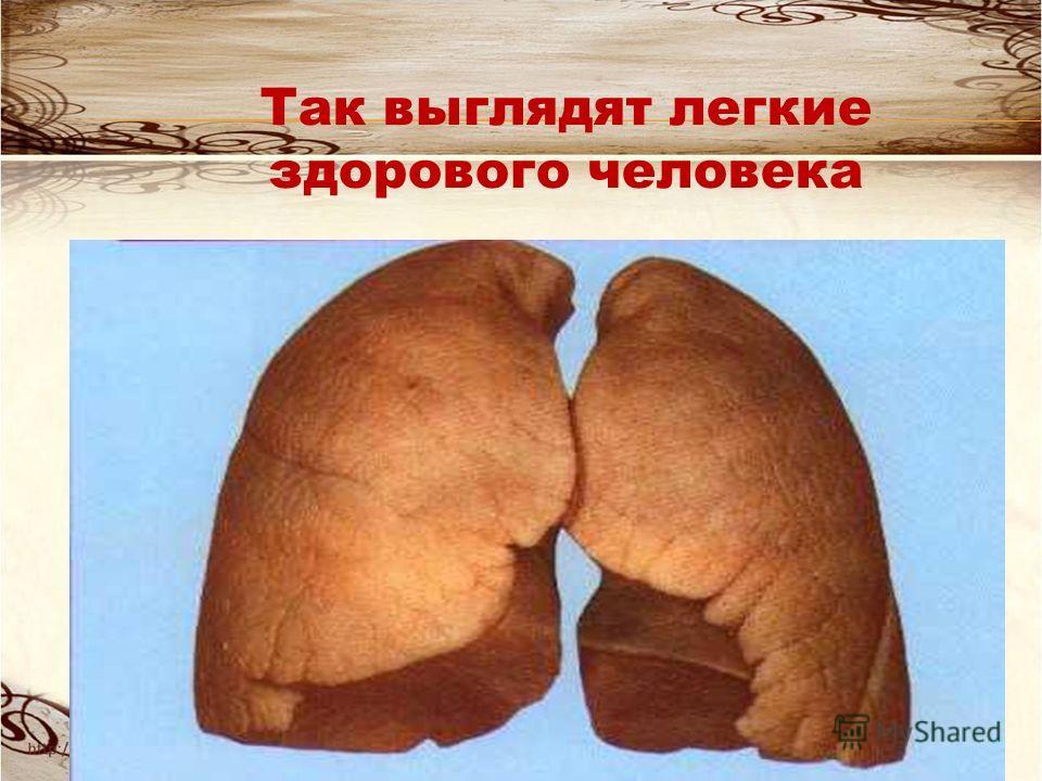 При вдыхании дыма никотин поступает глубоко в легкие, где он быстро проникает в кровь и достигает мозга и сердца.
