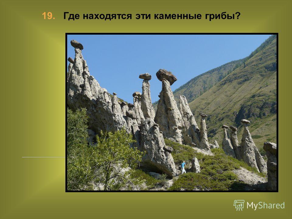 19. Где находятся эти каменные грибы?