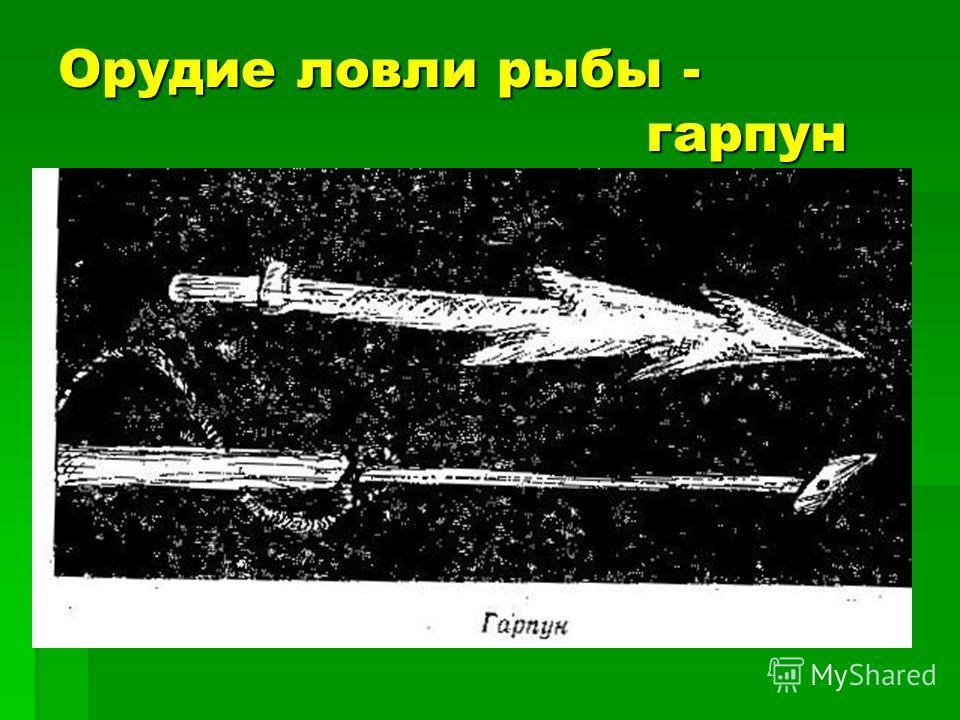 Орудие ловли рыбы - гарпун