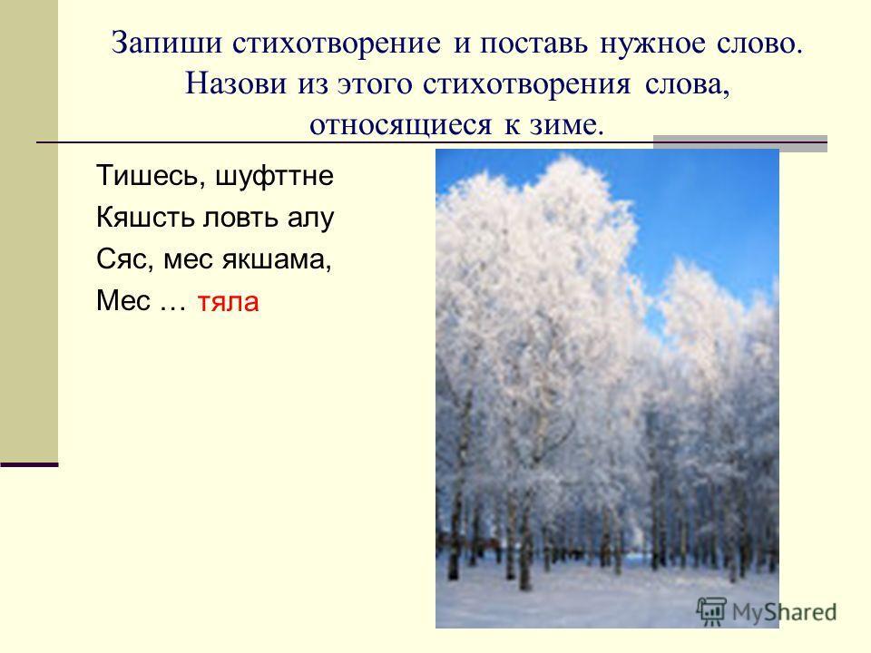 Запиши стихотворение и поставь нужное слово. Назови из этого стихотворения слова, относящиеся к зиме. Тишесь, шуфттне Кяшсть ловть алу Сяс, мес якшама, Мес … тяла