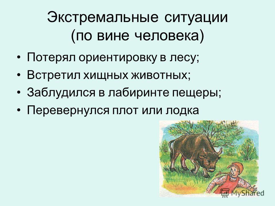 Экстремальные ситуации (по вине человека) Потерял ориентировку в лесу; Встретил хищных животных; Заблудился в лабиринте пещеры; Перевернулся плот или лодка