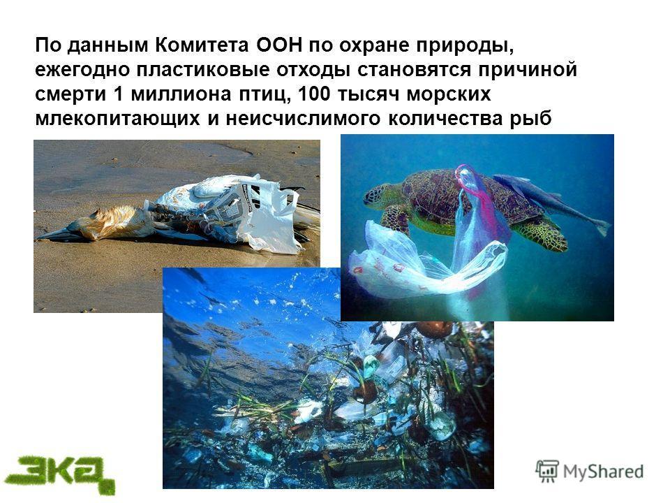 По данным Комитета ООН по охране природы, ежегодно пластиковые отходы становятся причиной смерти 1 миллиона птиц, 100 тысяч морских млекопитающих и неисчислимого количества рыб