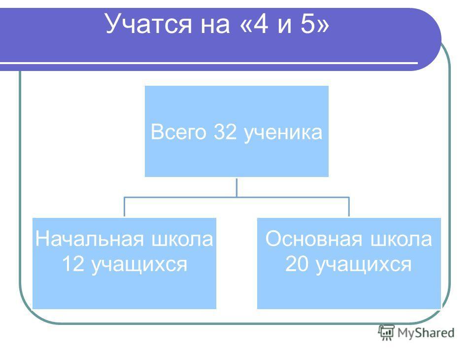 Учатся на «4 и 5» Всего 32 ученика Начальная школа 12 учащихся Основная школа 20 учащихся