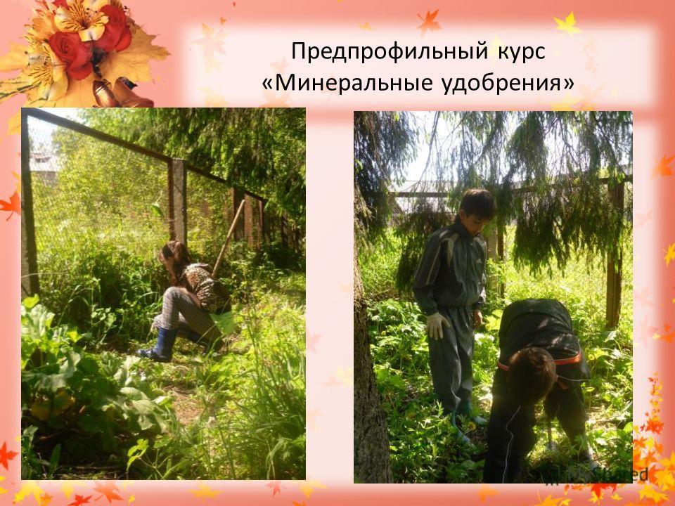 Предпрофильный курс «Минеральные удобрения»