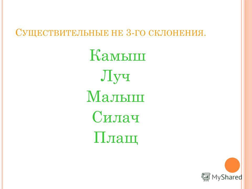 С УЩЕСТВИТЕЛЬНЫЕ НЕ 3- ГО СКЛОНЕНИЯ. Камыш Луч Малыш Силач Плащ