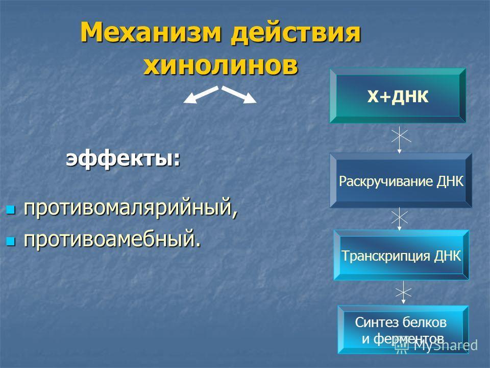 Механизм действия хинолинов эффекты: противомалярийный, противомалярийный, противоамебный. противоамебный. Х+ДНК Раскручивание ДНК Транскрипция ДНК Синтез белков и ферментов