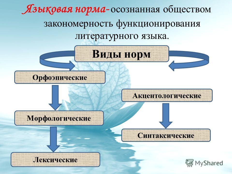 Языковая норма- осознанная обществом закономерность функционирования литературного языка. Виды норм Лексические Синтаксические Акцентологические Морфологические Орфоэпические