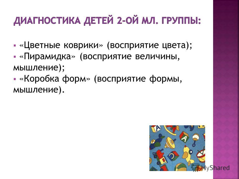 «Цветные коврики» (восприятие цвета); «Пирамидка» (восприятие величины, мышление); «Коробка форм» (восприятие формы, мышление).
