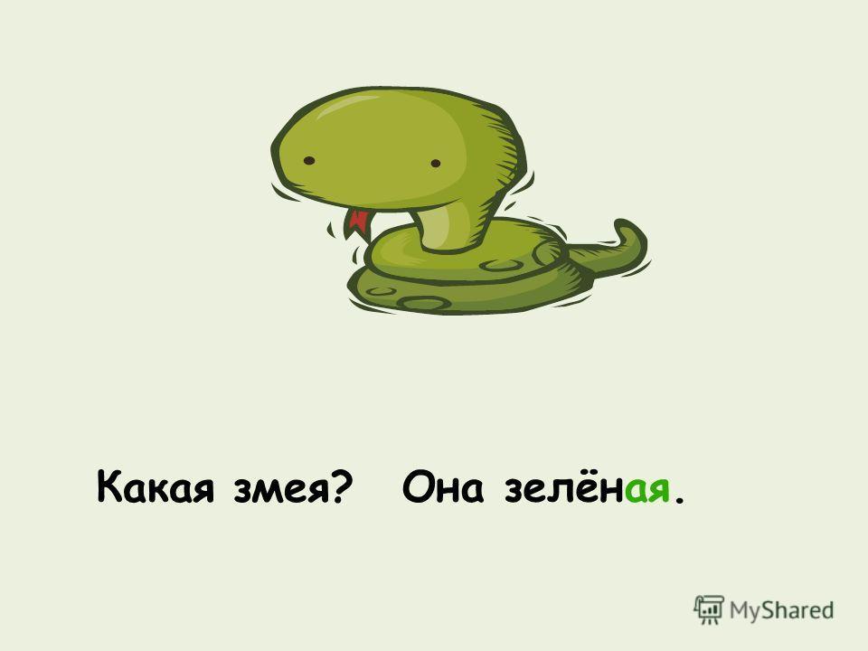 Какая змея? Она зелёная.