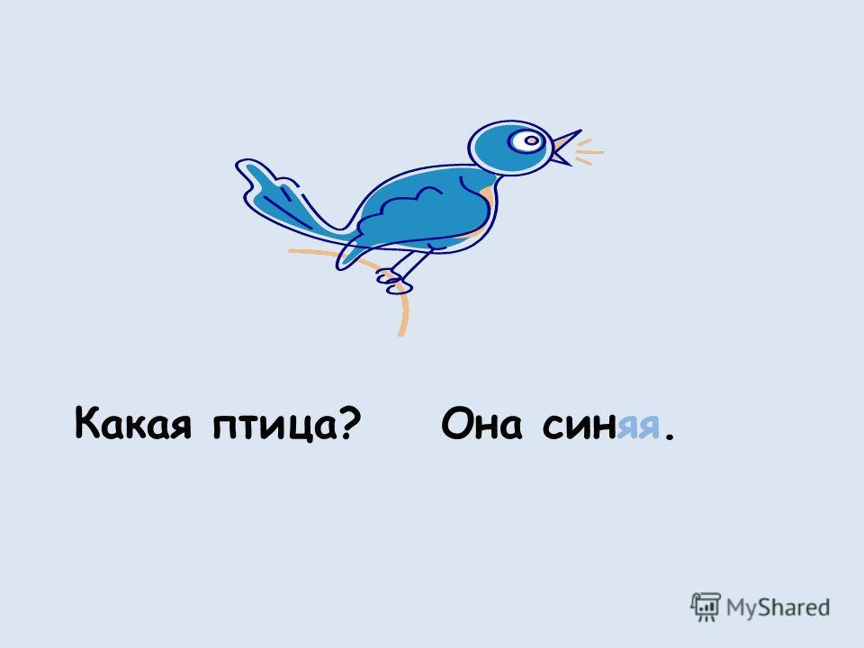 Какая птица?Она синяя.