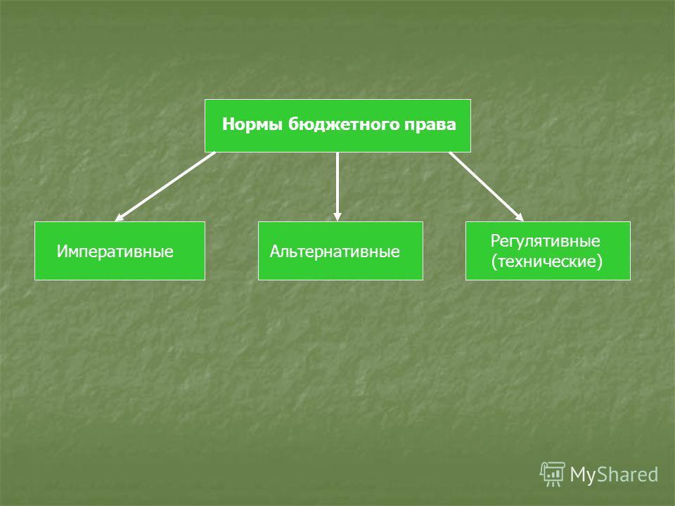 Регулятивные (технические) АльтернативныеИмперативные Нормы бюджетного права