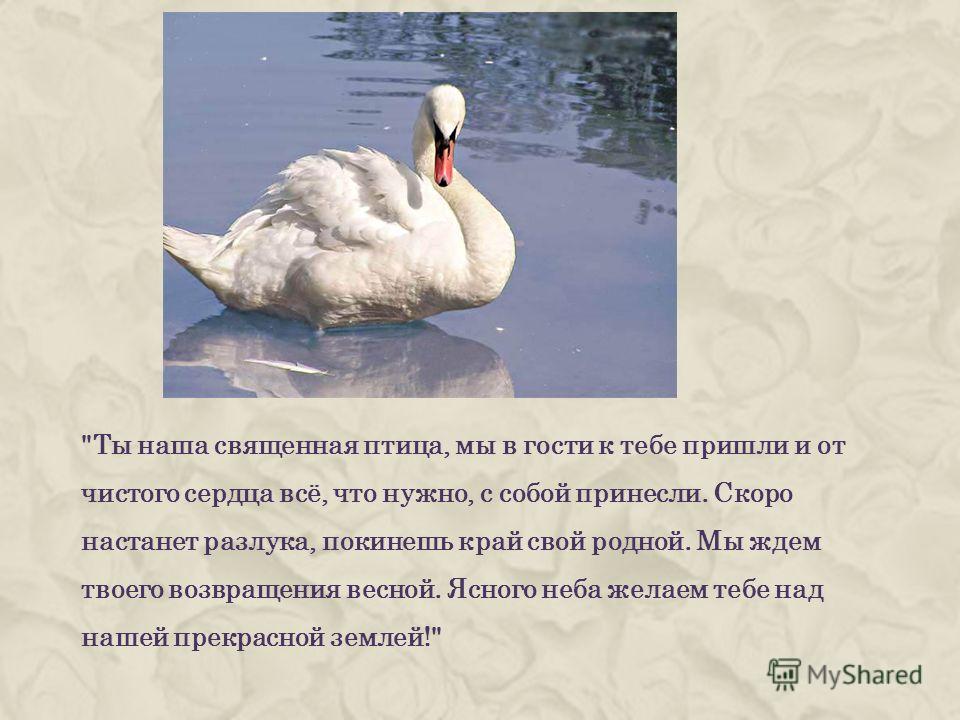 Ты наша священная птица, мы в гости к тебе пришли и от чистого сердца всё, что нужно, с собой принесли. Скоро настанет разлука, покинешь край свой родной. Мы ждем твоего возвращения весной. Ясного неба желаем тебе над нашей прекрасной землей!