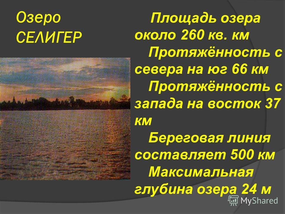 Озеро СЕЛИГЕР Площадь озера около 260 кв. км Протяжённость с севера на юг 66 км Протяжённость с запада на восток 37 км Береговая линия составляет 500 км Максимальная глубина озера 24 м